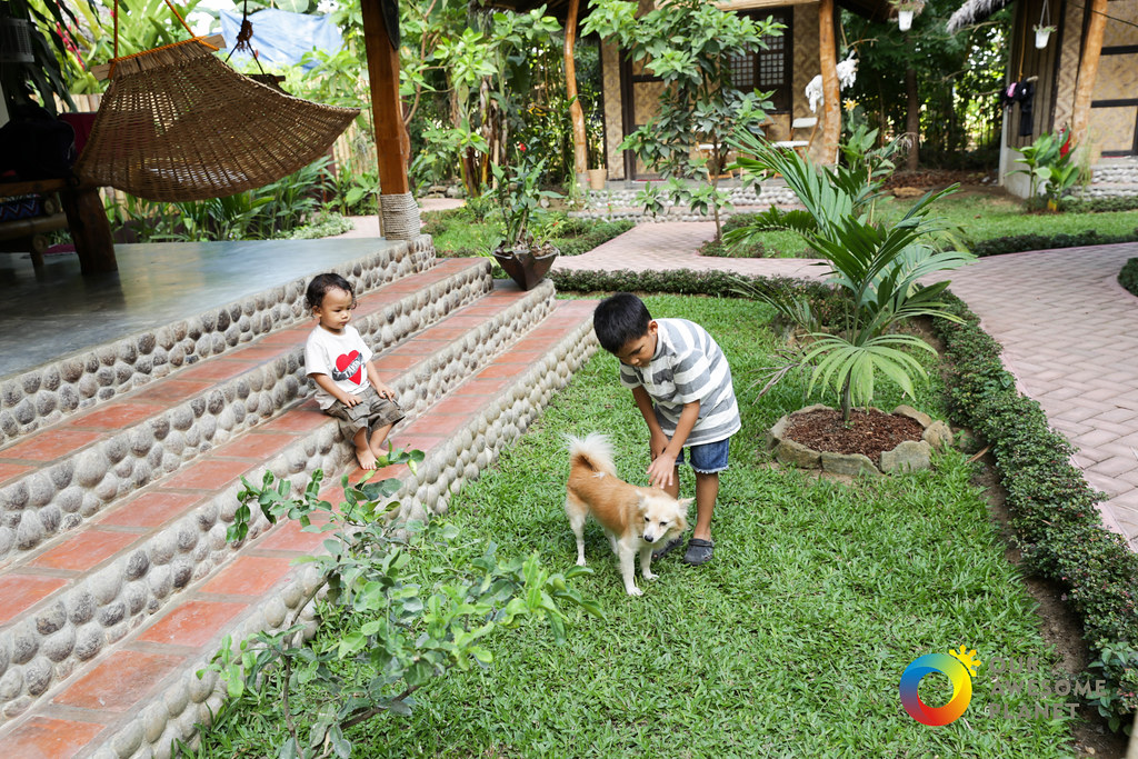 Fox Amp The Firefly Cottages Experience In Loboc Bohol