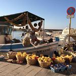 6 Viajefilos en Creta, Sougia-Chania11