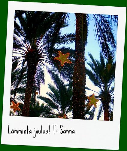 Palmuaseman kortti blogiin