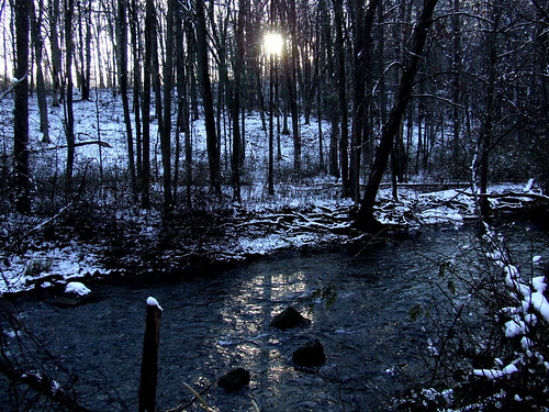 sun on Spring Creek
