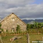 02 Vinyales en Cuba by viajefilos 020