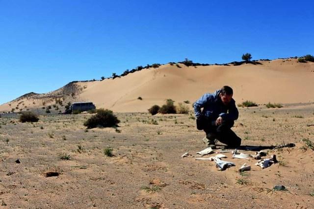 Gobi desert (1)