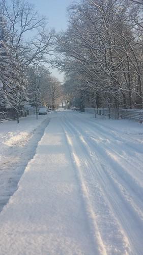 Winter... schon wieder (2/5)