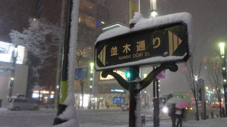 Ginza in Snow : Namiki Dori sign
