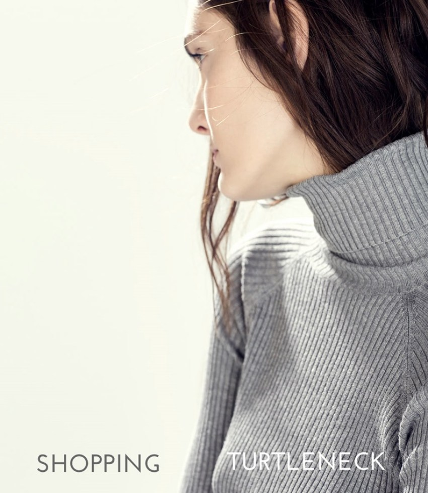 shopping_turtleneck_sweater