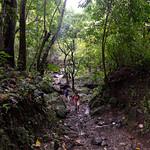 09 Viajefilos en Panama, Valle de Anton 27