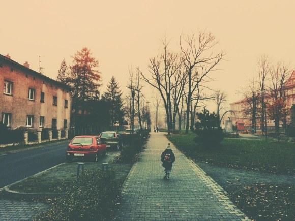 Foggy Day (11/14/14)
