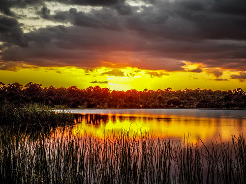 Indrio Sunset Nikon-001
