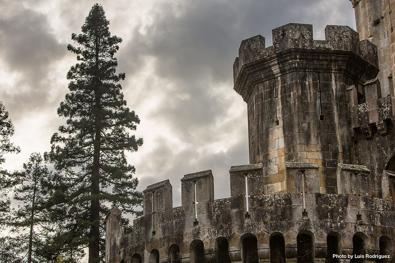Castillo de Butrón-12