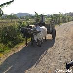 02 Vinyales en Cuba by viajefilos 016