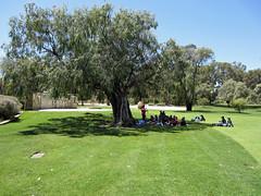 open air teaching