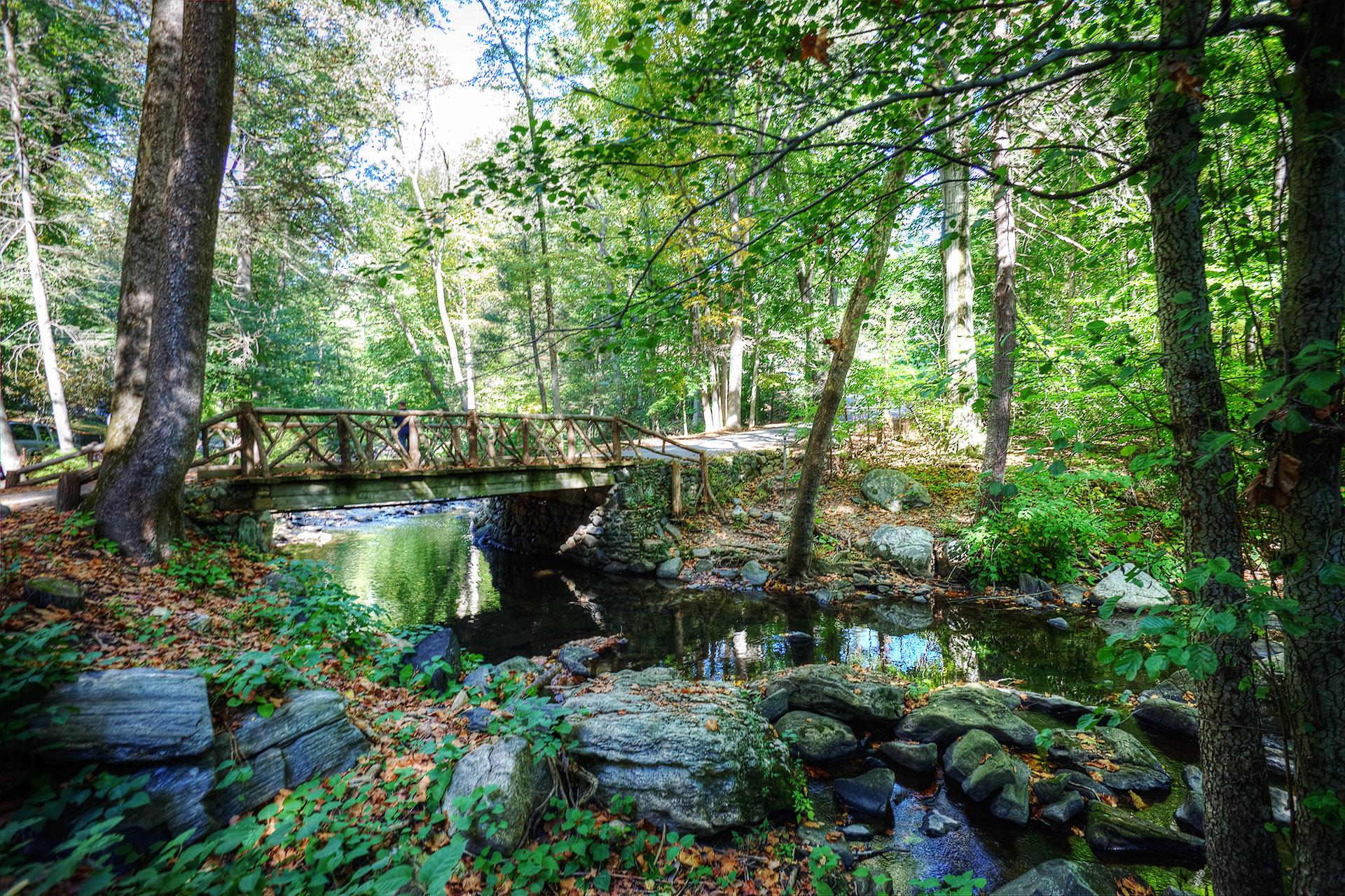 Sleepy Hollow Cemetery bridge.