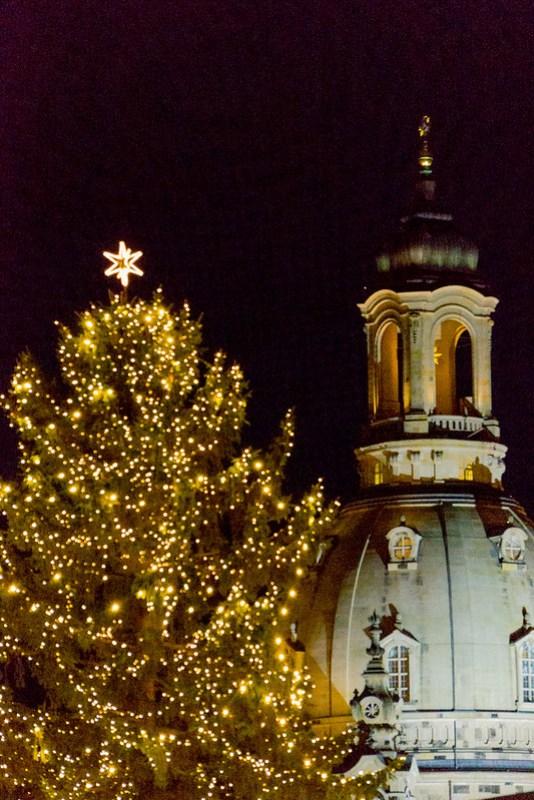 Striezelmarktbaum, Frauenkirche
