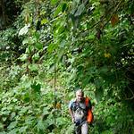 01 Viajfilos en Panama. Sendero Quetzal 36