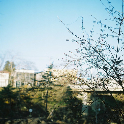 Rolleiflex_04_04