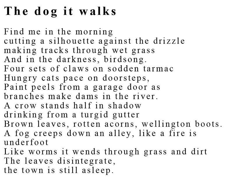 the dog it walks