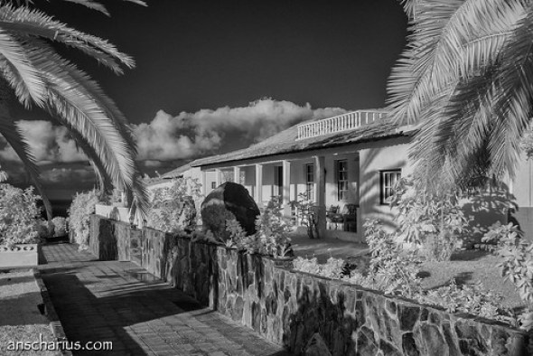 Finca San Juan #1 - Nikon 1 V1 Infrared 700nm & 10-100mm CX Lens