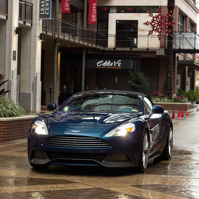 Vanquish on the prowl