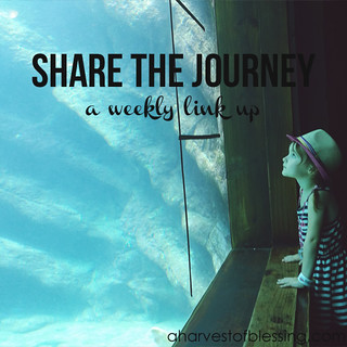 A Harvest of Blessing - Share the Journey Link Up