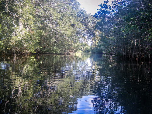 Indian River Paddling-64
