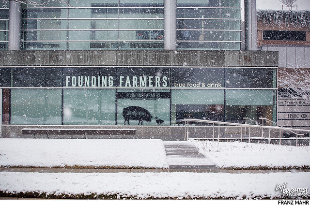 150121Founding Farmers-012
