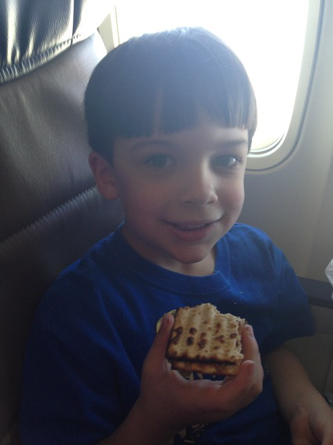 Shugie and Matzah on a Plane