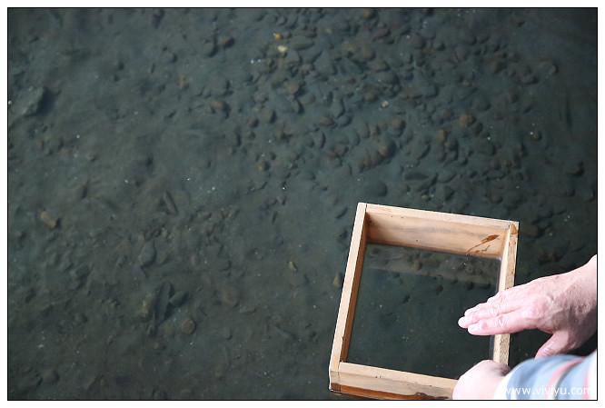 宜蘭,山泉水,旅遊,有機,火鍋,烏石漁港,花泉休閒農場 @VIVIYU小世界