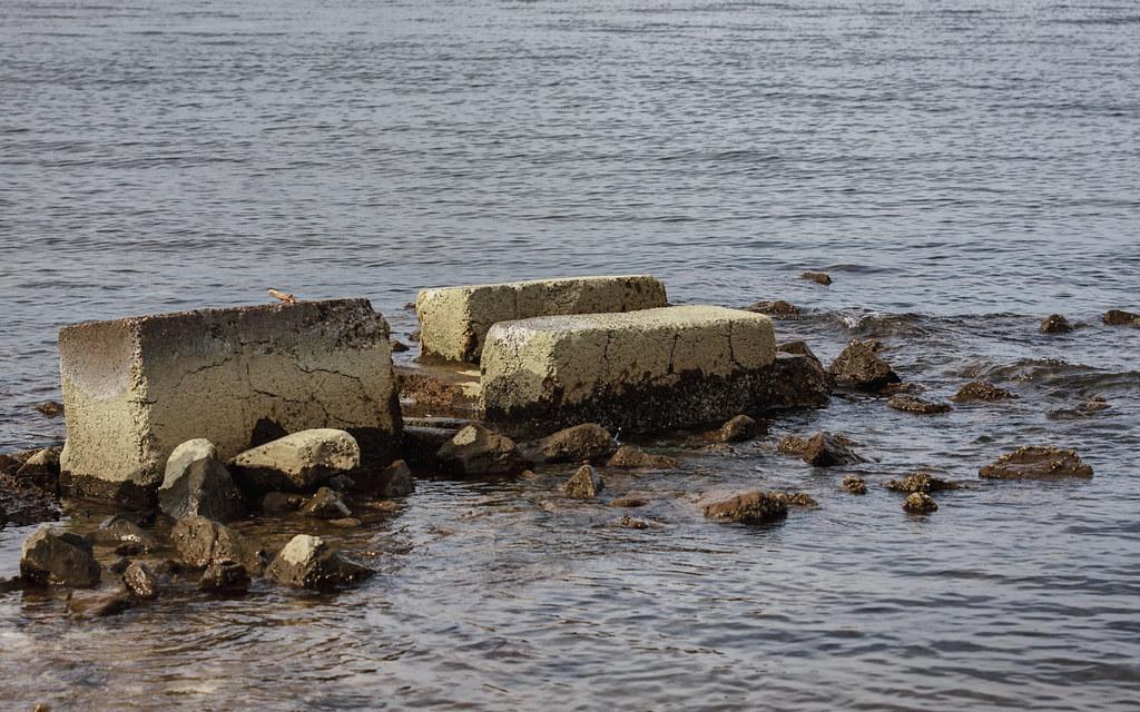 Bayside Beach Maryland Tripcarta