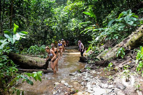 Jungle Trekking in Costa Rica