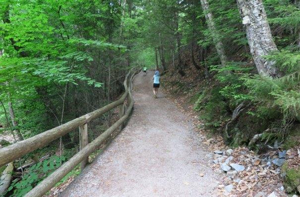 Sabbaday Brook Trail