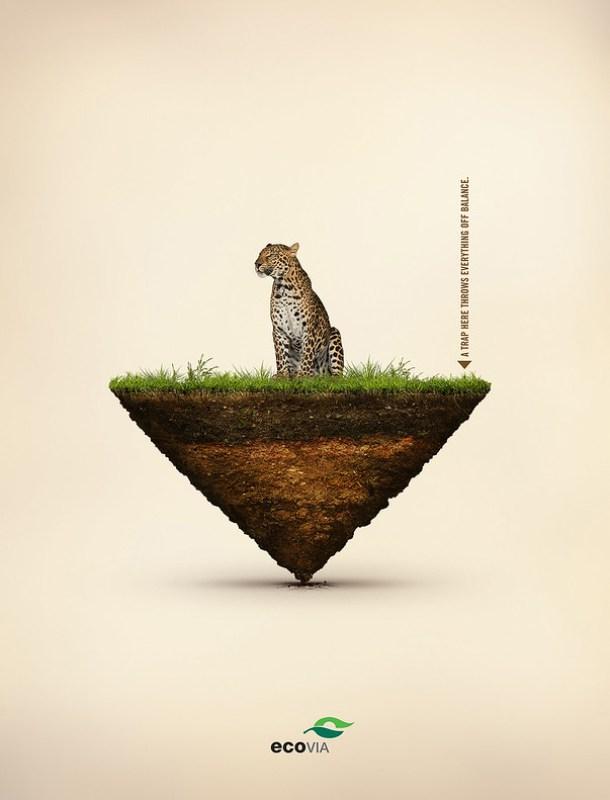 Ecovia Public Interest - Balance of Nature 1