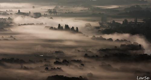 Fog on the city