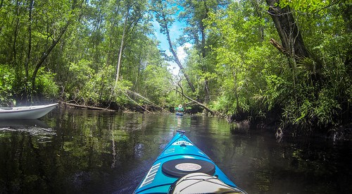 New River Paddling-81