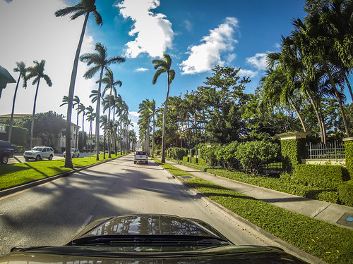 Palm Beach-001