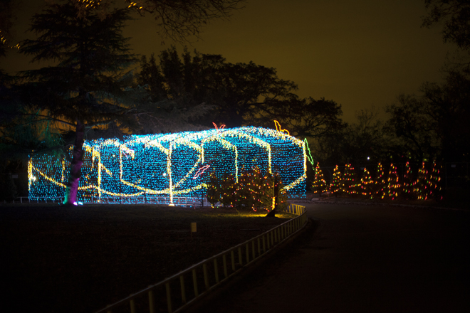 trail-of-lights12