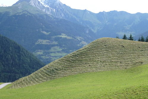 Høhøst i Østtirol