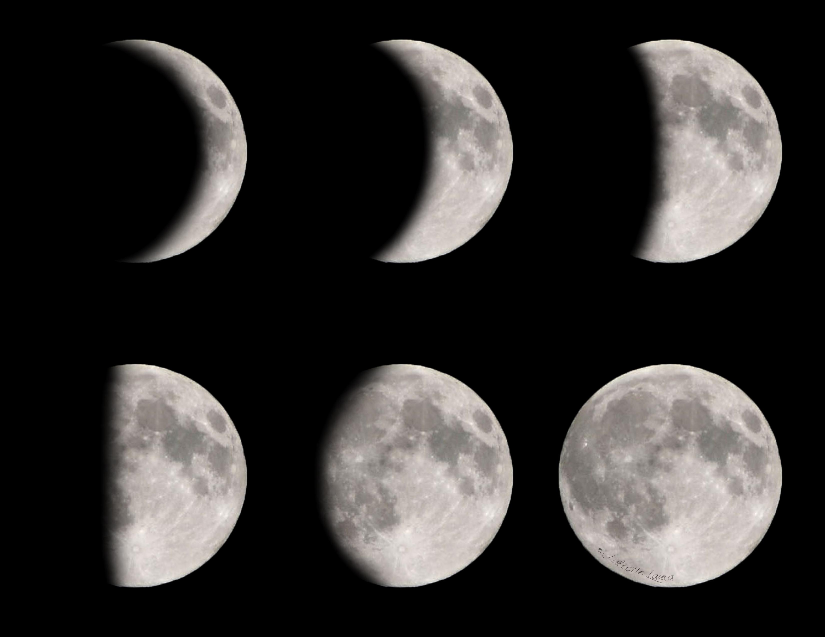 Diy Moon And Moon Phase Shirts Plus Three Free Printable
