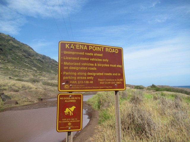 Picture from Kaena Point, Oahu