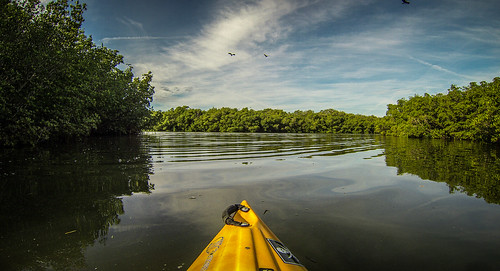 Indian River Paddling-021