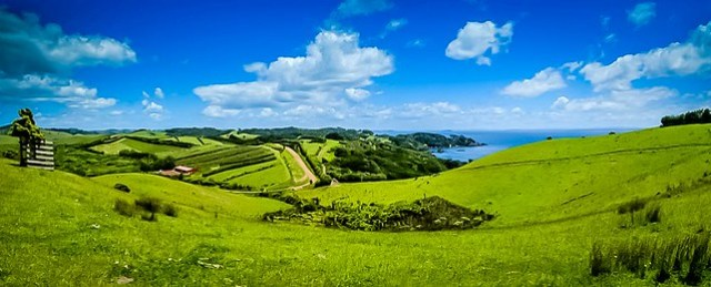 141130.243 P Man O' War Vineyards, Waiheke, NZ