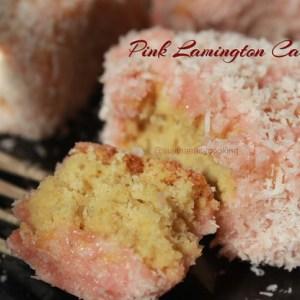 Pink Lamington Cake2