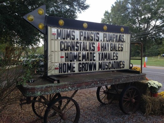 Williams Orchard and Nursery, Springville AL