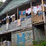 07 Viajefilos en Panama. Isla Bastimentos 14