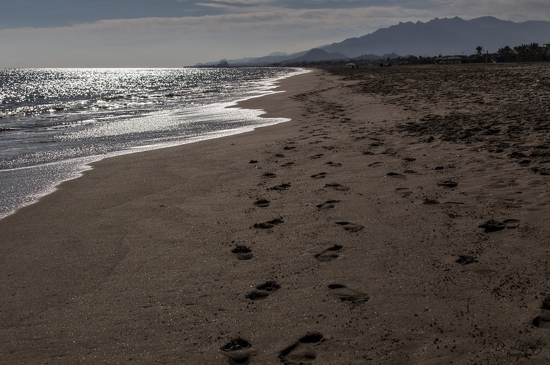 Seremos como pisadas en la arena / We will be like footprints in the sand