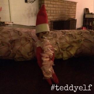 Teddy Brings School Treats