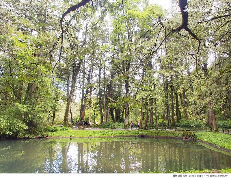 嘉義景點,森林公園,神木車站,阿里山 @薇樂莉 Love Viaggio | 旅行.生活.攝影
