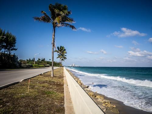 Palm Beach-003