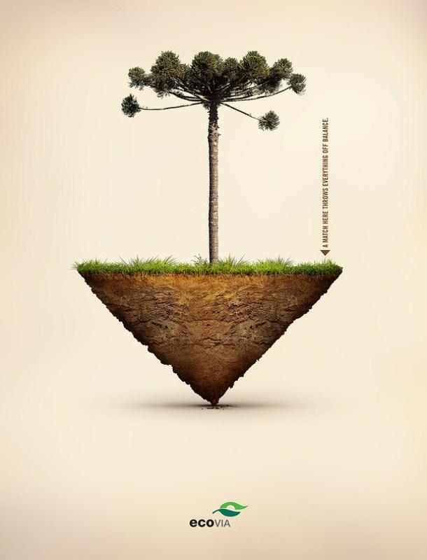 Ecovia Public Interest - Balance of Nature 2