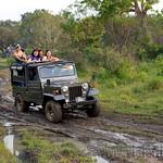 06 Viajefilos en Sri Lanka. Minneriya 19