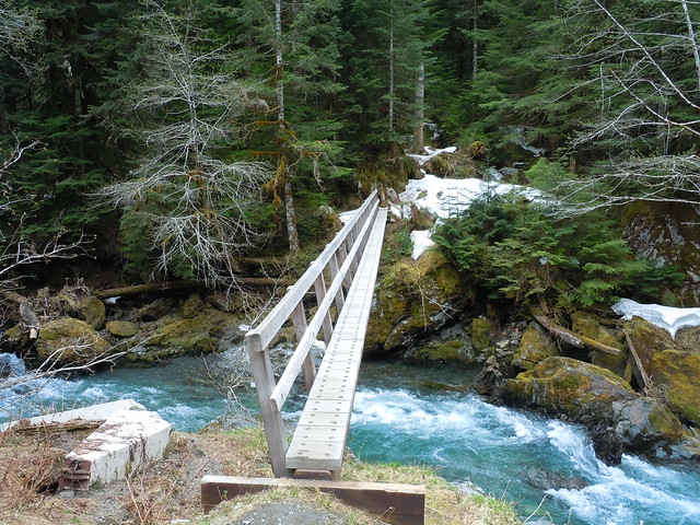 Bridge Over The Quinault River